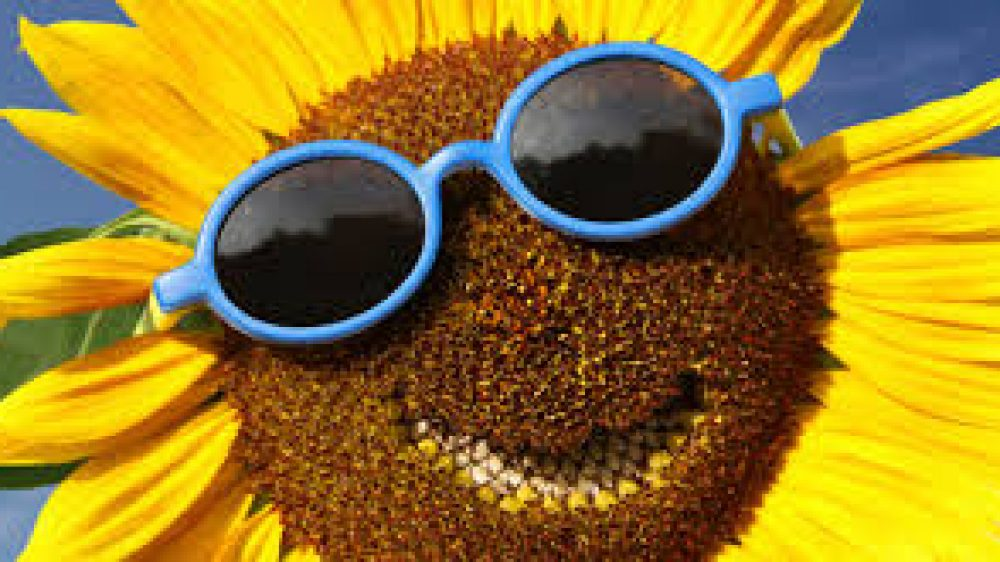 TRAS LAS GAFAS HAPPY-FLOWER